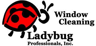 Window Cleaning Tucson Oro Valley Marana Ladybug Window
